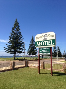 motel sign and norfolk pine tree